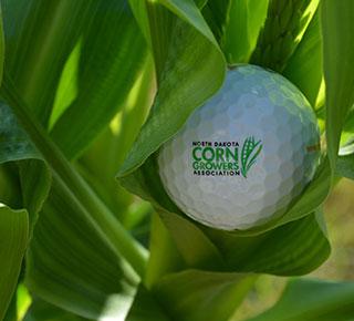 Golf Tournament NDCGA